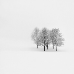 Lonely, Pawel-Klarecki