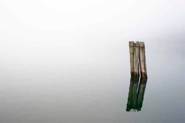 Still, David-Niddrie-13